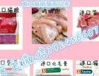 仙女猫【布偶猫】包健康出售