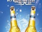 哈尔滨纯啤酒 哈尔滨纯啤酒诚邀加盟