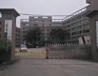 龙华观澜独门独院厂房出售