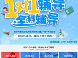 长沙长沙县专业初三一对一辅导班一般多少钱