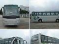 潮汕3-61座全新大巴车-旅游租车-企业班车优惠中