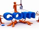 东大沽做网站公司,哪家做的更专业