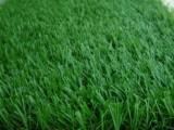 北京假草坪仿真草坪廠家