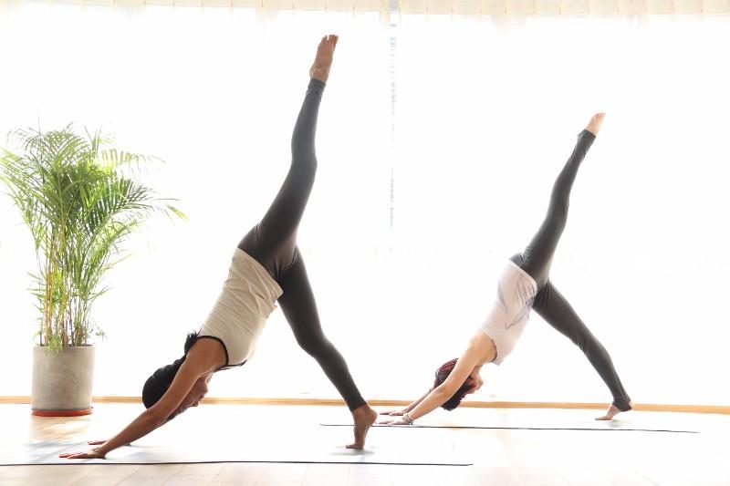 南安市较好的瑜伽馆--瑜伽花园 瑜悦伽人
