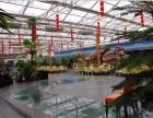 广东惠州绿色生态阳光玻璃生态餐厅 大开间玻璃墙体温室大棚