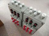 长春BXMD-8K加气站专用的防爆配电箱定做