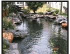 湖州别墅花园庭院锦鲤鱼池 酒店锦鲤鱼池设计建造 鱼池过滤系统