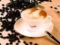 廊坊咖啡之翼加盟费条件咖啡之翼加盟优势