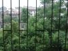 怀化-二中拘留所单位房3室2厅-1000元
