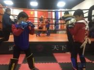 天津武术散打暑假培训-南开区哪里有散打暑假防身班