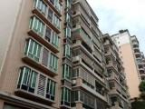 独栋住宅底商,双证,学位房,可征收,城轨,商业住宅中心区