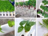 北京智慧农夫农业科技技术有限公为