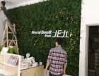 沈阳铁西植物屏风设计多种风格组合 满足您的个性需求