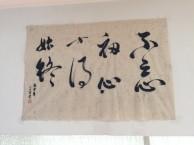 南京国画培训南京成人学国画南京学绘画培训班南京国画班