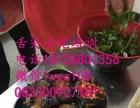 臭豆腐创业做生意就到广州舌尖小吃培训