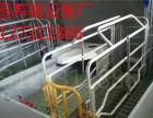 新型养猪设备欧式分娩床生产设计厂家世昌畜牧专卖欧式分娩床