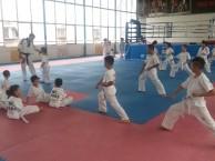 西安南二环散打跆拳道培训