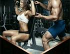 活动钜惠、腹肌、马甲线嗨起来……
