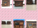 杭州宠物寄养