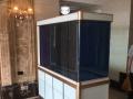 成品生态鱼缸 专业定做鱼缸各类淡水鱼及热带鱼 送货上门