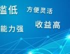 启牛财富网站建设