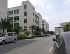 观澜厂房A3栋1楼2300 3层出租