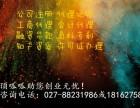 武汉许可证办理公司武汉顶呱呱各类许可证办理