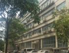 虎门村头推出800平方米带办公室一楼厂房招租