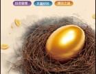 金融理财广告能上凤凰网推广吗?推广热线?