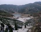 长乐大象山生态陵园管理有限公司墓位销售业务联系