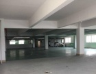 出租小榄车站附近带地坪漆800方楼层新厂房