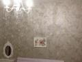 桐城桐城市区 自 1室1厅 43平米 精装修 押一付一