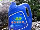 河南花盾植物防冻液厂家直销苗木抗冻液预防冻害