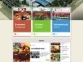 个人网站、企业网站、政府网站、门户网站、电商网站