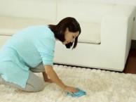 专业承接羊毛 纤维及普通地毯保洁清洗经验丰富认准美吉亚