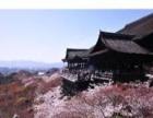 3月22号樱花日本休闲6日游