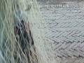 30大立马鱼网,