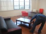新房装修除甲醛公司,口碑好的办公室除甲醛哪里有