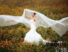 致金乡时尚婚纱摄影的顾客,一份重要公告