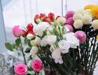 襄阳昕派花艺培训分享干花怎样收罗