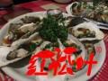 贵港烤鱼培训哪个好 红松叶 高足弟子U1