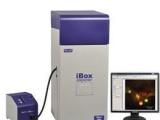 供应iBox Explorer 美国UVP活体小动物荧光显微成像