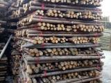 河北北京,唐山,廊坊绿化竹竿,杉木杆