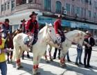 深圳出租马匹有真马可以骑