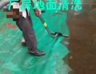重庆渝北区石坪专业地毯清洗 玻璃清洗 清洗窗帘家政服务