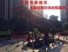 上海较大大型恐龙模型 军事展出租租赁基地
