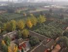 温江大朗福满园陵园公墓 成都大朗福寿园公墓陵园