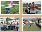 深圳宝安附近员工团建可以结伴游玩的西乡农家乐野炊休闲生态农场