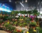 鲜花绿植摊位出租
