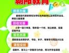临港区朝阳教育暑假班招生